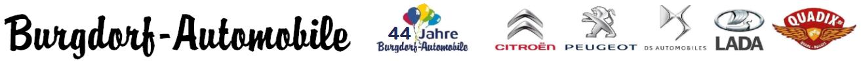 Burgdorf Automobile